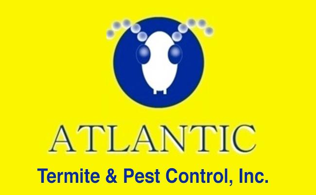 Atlantic Pest