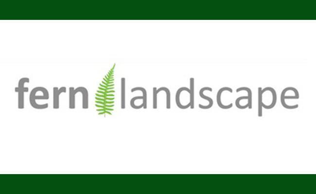 Fern Landscape