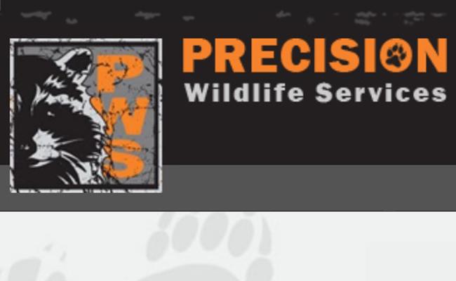 precision_wildlife